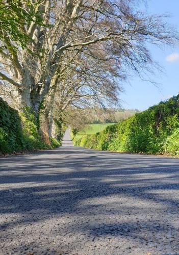 Cathy DoigThe Long Road Ahead